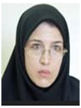 Doctor Maryam Bayati Khatibi Full Professor, University of Tabriz