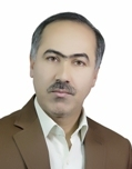 Doctor Mojtaba Poursalimi Assistant Professor, Faculty of Economics and Business Administration, Ferdowsi University, Mashhad, Iran
