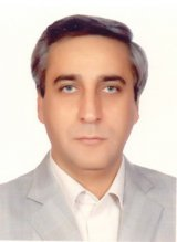 Saeed  Mirdamadi Professor, Iranian Research Organization for Science and Technology (IROST)